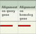 full alignment image example